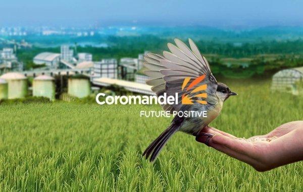 CoromandelREPORT