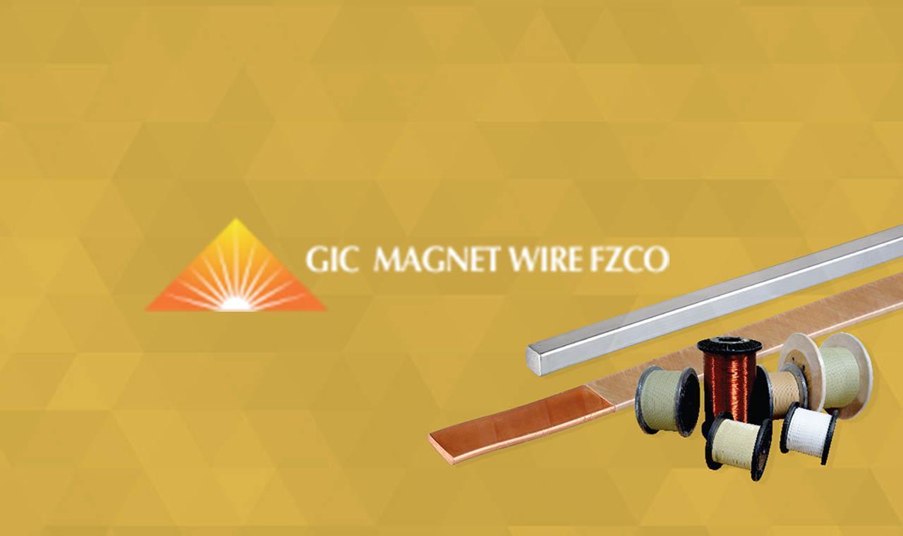 GicmagnetwireWP